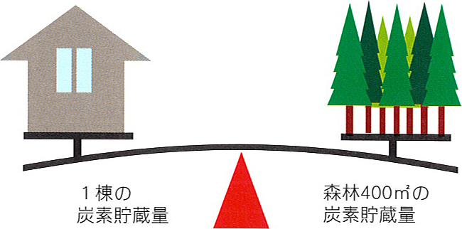 木の家は都市に育った森